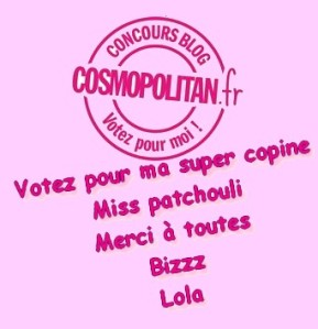 Votez Miss Patchouli