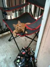 Thor-chaise